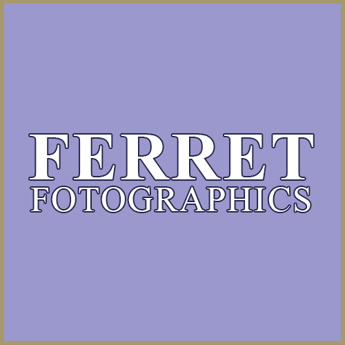 Ferret Fotographics at the Chateau Impney Hill Climb, Droitwich